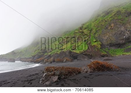 Black Sand Beach - Dyrholaey, South Iceland