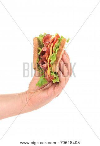 Hand holding tasty sandwich.