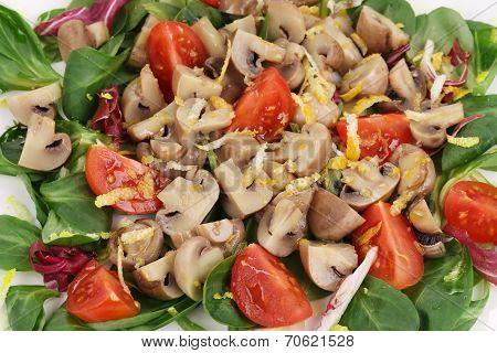 Mushroom salad with tomatoes.