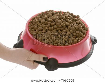 Full Bowl Of Dog Food