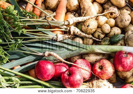 Collection Of Freshly Harvested Fruits And Vegetables