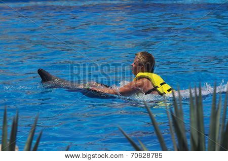Belly Ride on a Dolphin