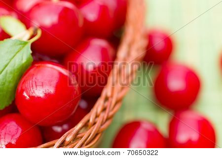Organic Cherries In A Basket
