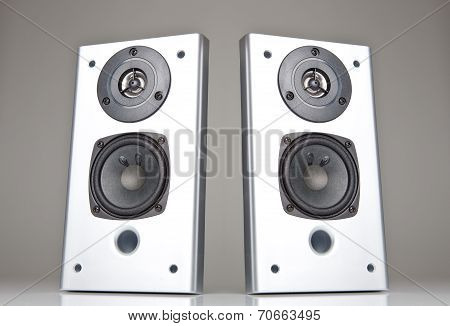 The silver audio speakers