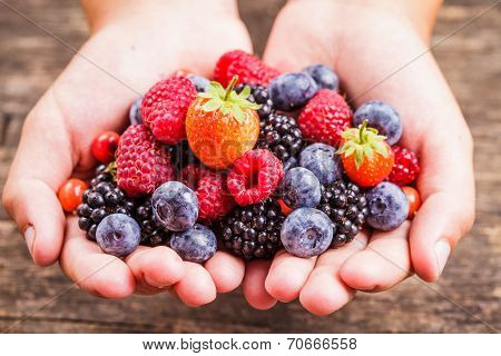 Berries In Hands