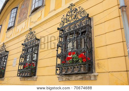 Ornate Wrought Iron Window Shutters With Germanium Plants And Yellow Wall