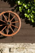 picture of stagecoach  - Carriage wheel hangs on board wall with ivy - JPG