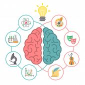 image of right brain  - Conceptual flat vector illustration of left and right hemispheres of the brain and different icons of the logical and creative activities - JPG