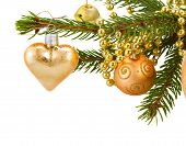 stock photo of fir  - golden christmas decorations evergreen fir tree isolated on white background - JPG