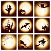 picture of spiderwebs  - Collection of halloween elements - JPG