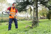 pic of trimmers  - portrait of worker with hedge trimmer in a garden - JPG
