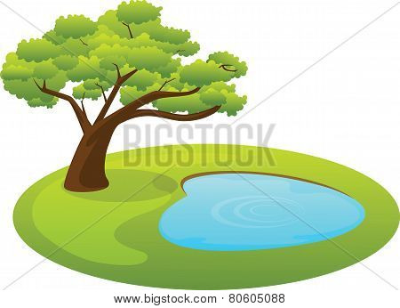 Pond and tree