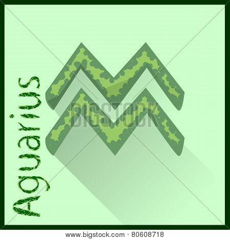 Aguarius  Zodiac sign vector illustration
