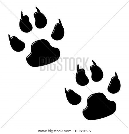 3D Dog Foot Prints