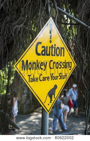 Warning Sign Against Monkeys Crossing The Road