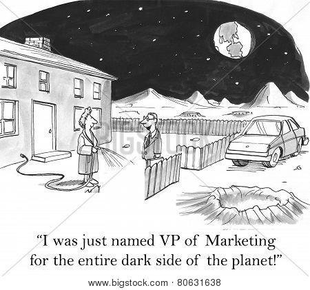 VP Marketing