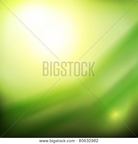 Abstract Diffuse Green Background