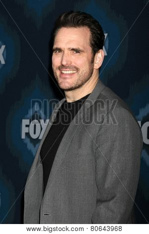 LOS ANGELES - JAN 17:  Matt Dillon at the FOX TCA Winter 2015 at a The Langham Huntington Hotel on January 17, 2015 in Pasadena, CA