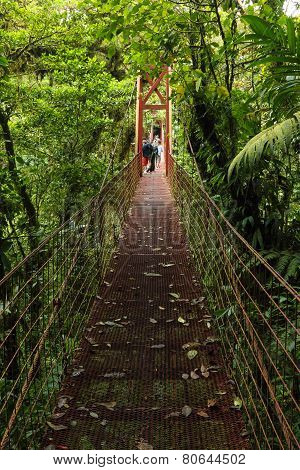 Suspension bridge, Monteverde Reserve, Costa Rica