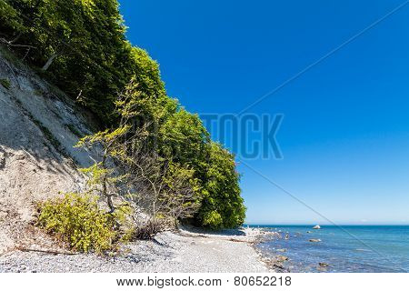 Baltic Sea Coast