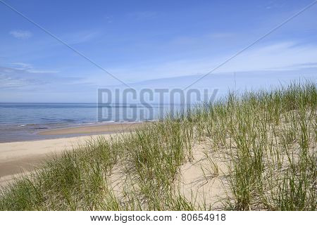 Ocean View from Sand Dunes