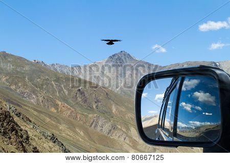 Meeting With Eagle On The Mountain Pass In The Car With Rear View Reflection
