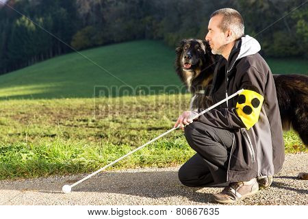 Attentive Guide Dog
