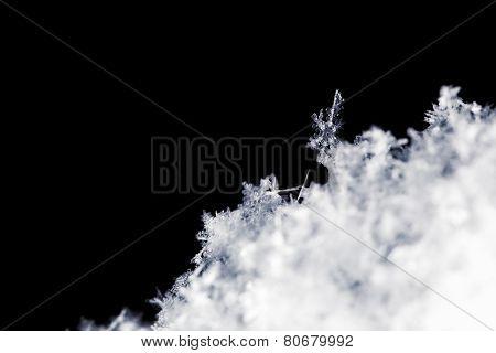 Side Profile Of Snowflake