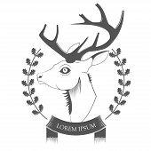 picture of deer head  - Deer Head isolated on white background vector - JPG