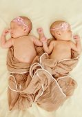 stock photo of identical twin girls  - two sweet lovely newborn twins are sleeping - JPG