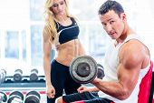 pic of lifting weight  - Couple in fitness gym with dumbbells lifting weight as sport - JPG