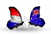 picture of holland flag  - Two butterflies with flags on wings as symbol of relations Holland and New Zealand - JPG