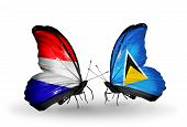 picture of holland flag  - Two butterflies with flags on wings as symbol of relations Holland and Saint Lucia - JPG
