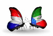 image of holland flag  - Two butterflies with flags on wings as symbol of relations Holland and Equatorial Guinea - JPG