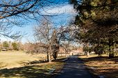image of suburban city  - Typical suburban American park in late January - JPG