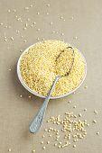 picture of millet  - Organic Millet Gruel in a Spoon - JPG