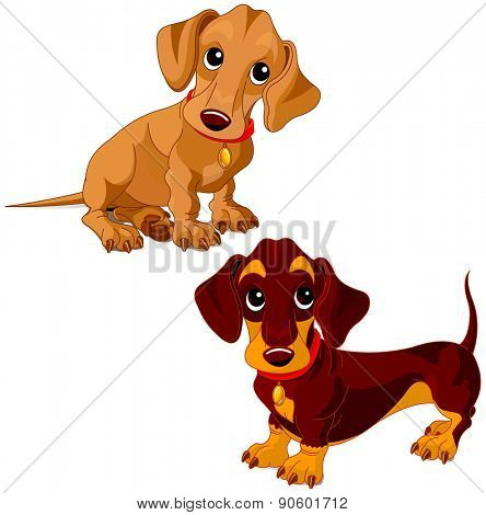 Illustration of a two cute dachshunds