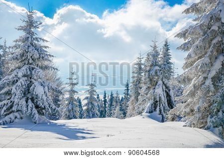 Winter mountain on forest  and cloudy sky, Poland