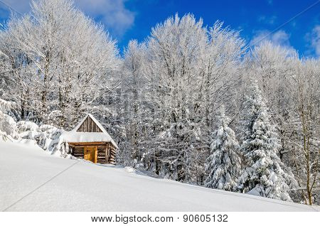 Cabin covered with snow in hills, Poland
