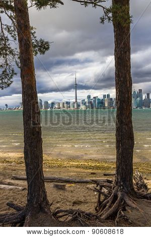 Toronto In Autumn, Canada
