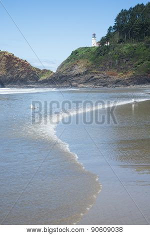 Heceta Lighthouse And Beach