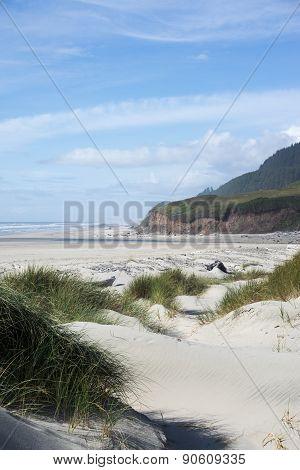 Big Creek Beach
