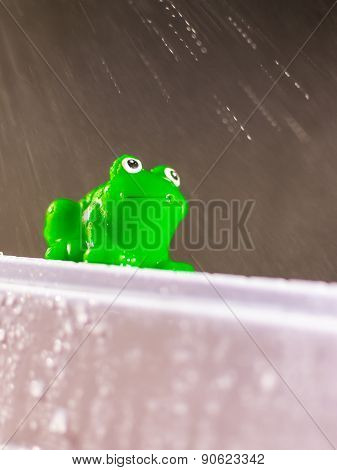 Plastic Green Frog In Rain