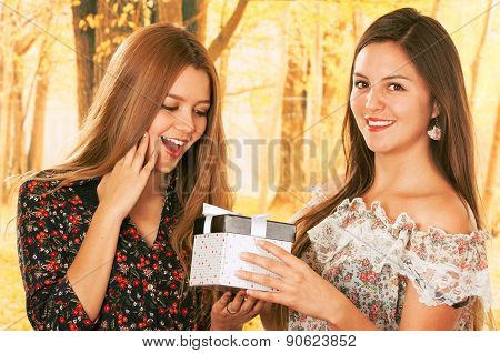 Two beautiful young girls with a gift box