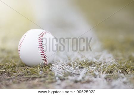 Baseball On The Infield Chalk Line