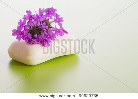 Soap topped with purple Prairie Verbena flower, on gradient green background