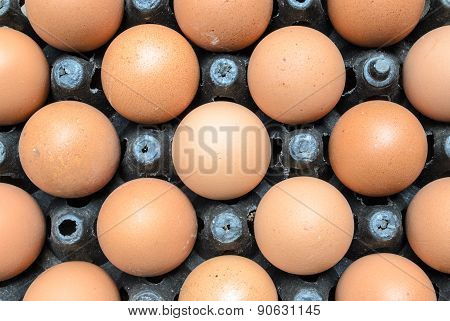Tray Of Hen's Eggs
