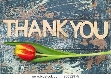 Thank you written with wooden letters and red and yellow tulip