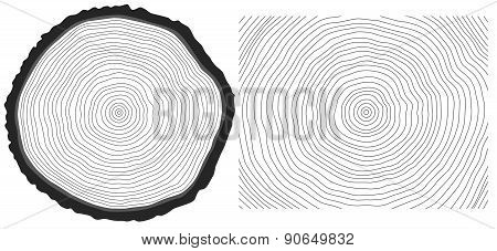 Vector Black And White Saw Cut Pine Tree Trunk And Tree Rings Background