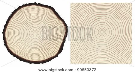 Vector Colour Saw Cut Pine Tree Trunk And Tree Rings Background